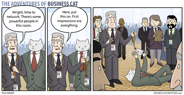 The Adventures of Business Cat - Impressions by tomfonder on DeviantArt