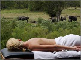 Outdoor treatment close to wildlife at Elephant Plains Game Lodge, Sabi sand, South Africa.