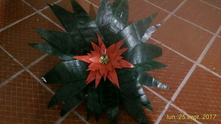 Planta hecha con tubos de papel higiénico. Fundación Beraca