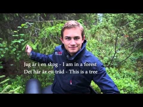 Learn Swedish, Lesson 1: Useful Phrases