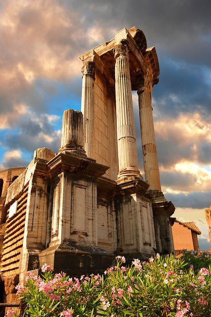 Temple of Vesta, The Forum :: Rome, Italy.