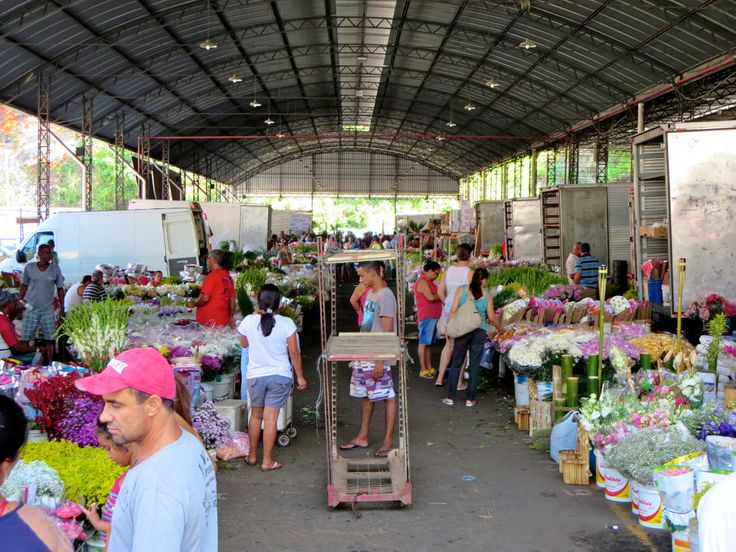CADEG – MERCADO MUNICIPAL DO RIO DE JANEIRO - Two days after Christmas (and still crispy from our Boxing Day sunburn) we decided to search forsome indoor fun. My husband, while looking up Rio activities online, came across a blurbthat mentio...
