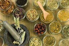 Benefits of Eucalyptus Tea | LIVESTRONG.COM