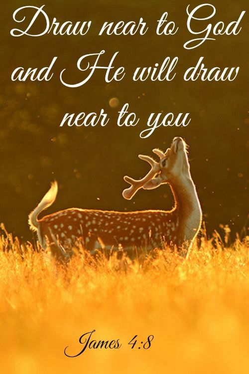 James 4:8 (NLT) ~ Come close to God, and God will come close to you. Wash your hands, you sinners; purify your hearts, for your loyalty is divided between God and the world.