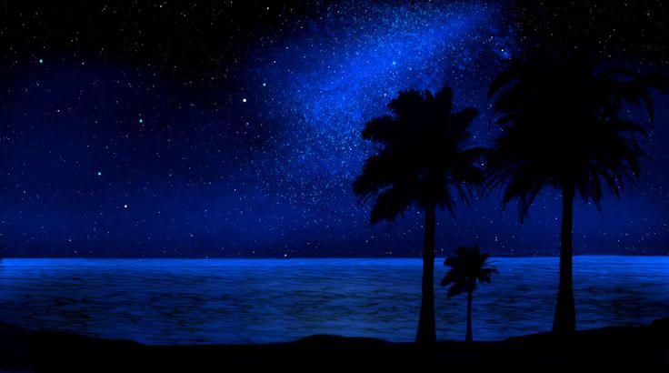 Tropical Beach, Glow In The Dark, Mural, Beach, Nocturnal