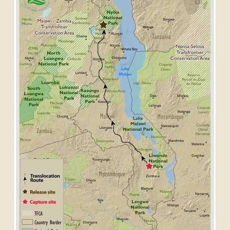 Best Malawi Maps Africa Maps That Include Malawi Images On - Us wildlife map of the 1400s