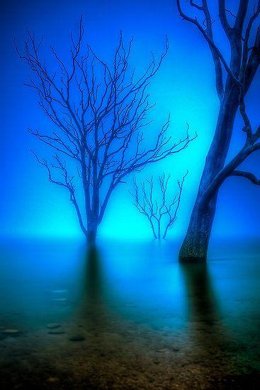 Foggy Dawn at Lake Eildon - Victoria - Australia