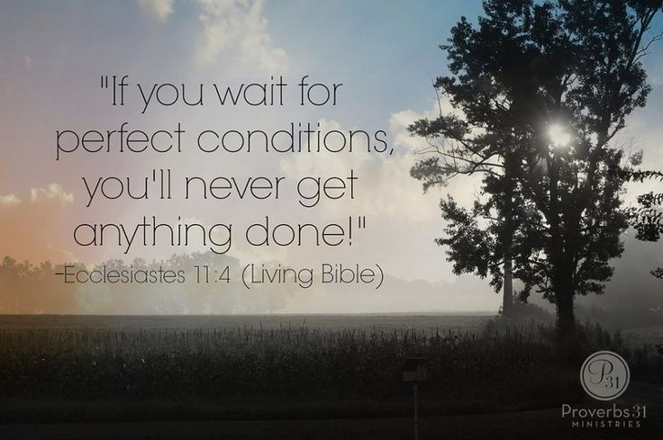 """""""We can't let our desire for """"perfect"""" circumstances paralyze our progress. Let's be brave. Trust God. And take our next step."""" {If you wait for perfect conditions, you will never get anything done. Ecclesiastes 11:4} ~ Renee Swope"""