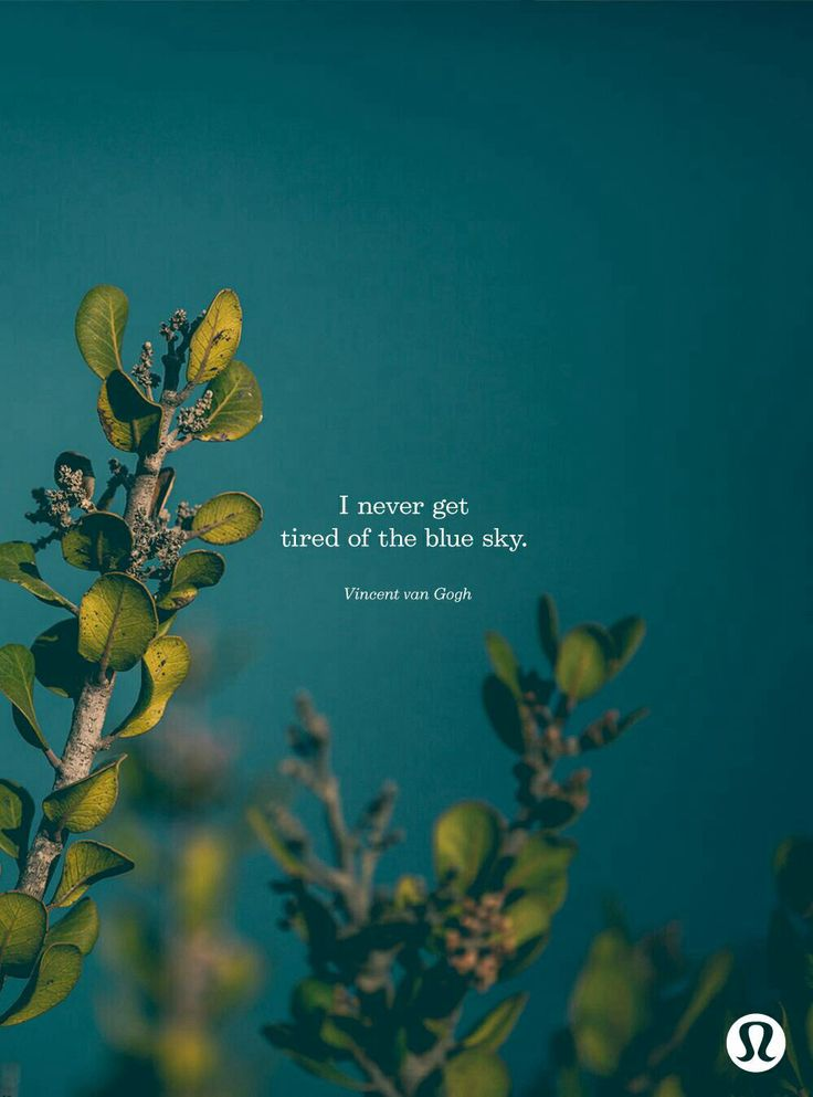 Blue Skies Forever Album - lyrics.com