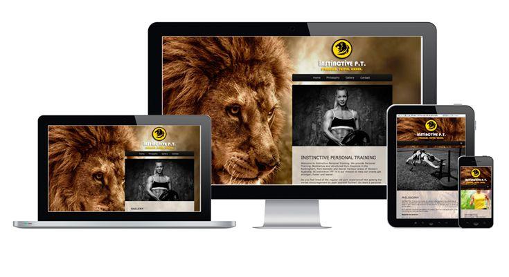 Instinctive PT - Fully Fluid Website Design by V&P