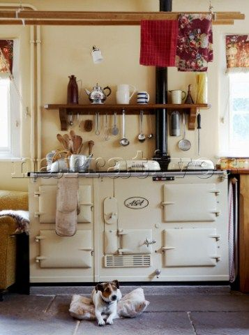 Bd024 02 Small Dog On Tiled Floor With Aga In Country Narratives Photo Agency Cottage Kitchensfarmhouse