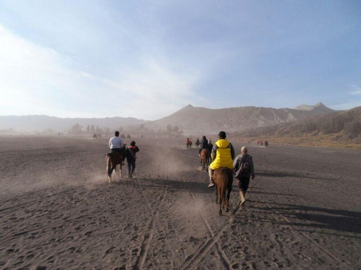 Riding horse at Pananjakan