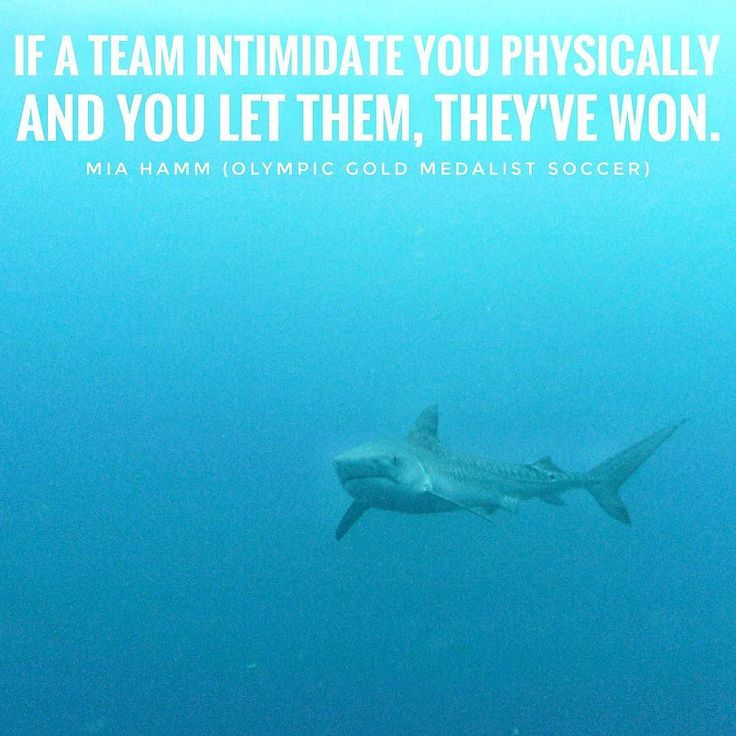 Wether doing high performance sports or high performance business - swimming with sharks  requires no fear but preparation. Best possible preparation builds confidence - and if you did your best there is no regret afterwards (the latter one might not be true for the actual swimming with the great white one) Coach Diemo Ruhnow #fitness #fitnessmotivation #sports #motivation #fitnesstips #fitspo #fitfam #train #gymlife #sport #fitnessaddict #fitnessmodel #fibo #fibo2017 #badminton…