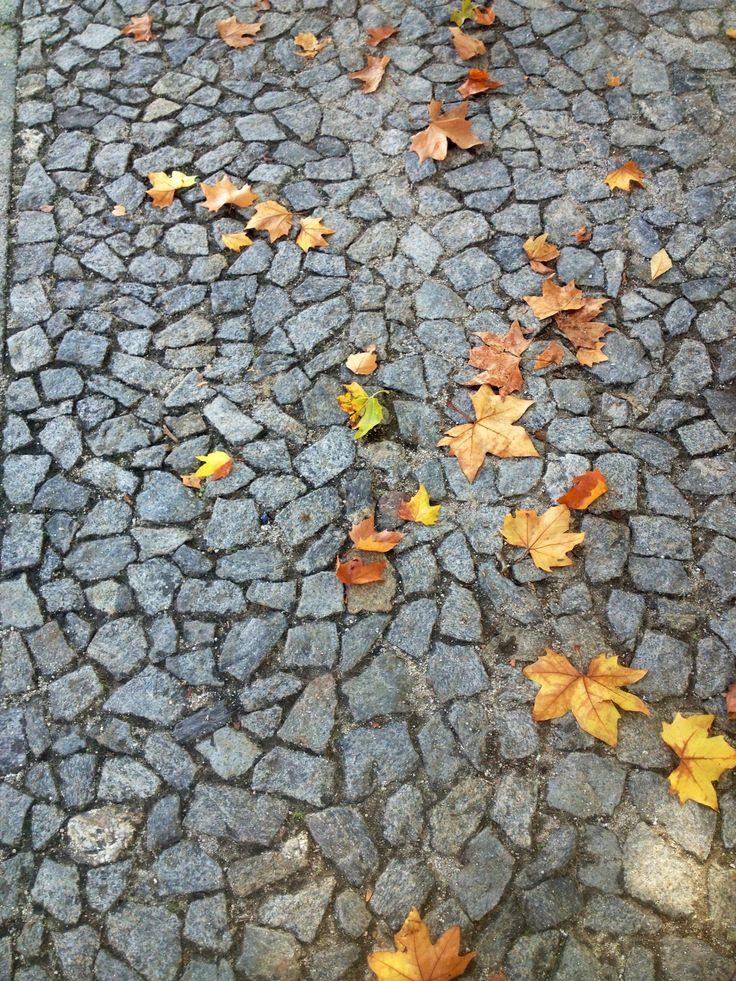 Autumn in Evora