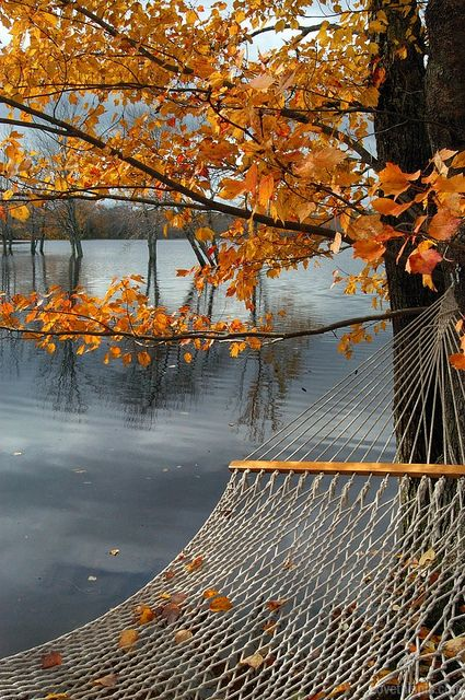 autumn in new hampshire by ja  little   this would literally be the best thing ever  a hammock by the water in fall  48 best hammock images on pinterest   relaxer decks and hammocks  rh   pinterest