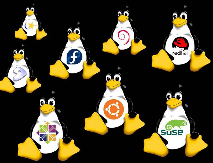 #like4like #like4follow #windows #linux #linuxfan #debian #slackware #google #yahoo #adobe #netbeans #eclipse #venezuela #vit #paraguana  #foxconn #biostar #c #java #spring #hibernate #ubuntu #fedora #gentoo #redhat #javascript #javaee #tecnologia