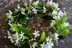 lovely wreath of jasmine