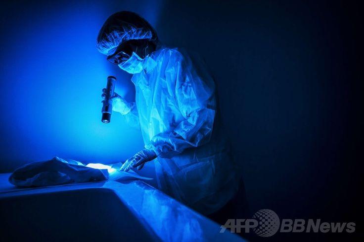 フランス東部のエキュリ(Ecully)にある国立科学警察研究所(Institut National de Police Scientifique、INPS)で、鑑識光源装置「クライムスコープ(CrimeScope)」でTシャツを分析する職員(2014年6月19日撮影)。(c)AFP/JEFF PACHOUD ▼26Jun2014AFP 科学捜査の現場、仏国立科学警察研究所 http://www.afpbb.com/articles/-/3018672 #CrimeScope #Institut_National_de_Police_Scientifique