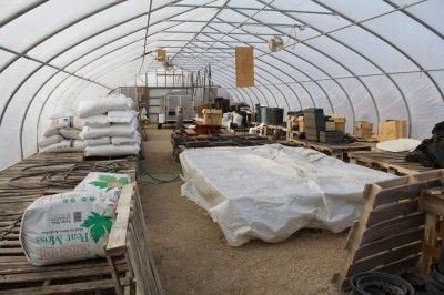 Greenhouse Supply List – Important Items For Greenhouse Gardening
