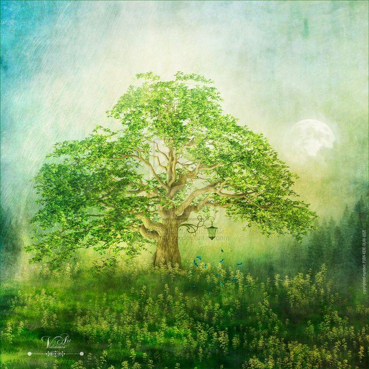 Summertree by vidimento on DeviantArt