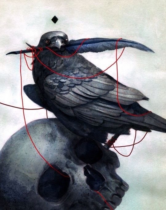 A Raven, a feather, a black diamond, some string & a skull. In other words a loose metaphor...