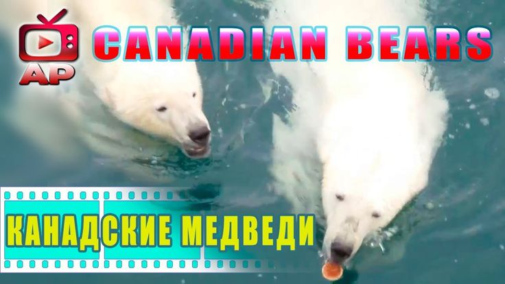 Breaking NEWS !♛♛♛ Russian off the coast of Canada!  ♛♛♛   Русские у бер...