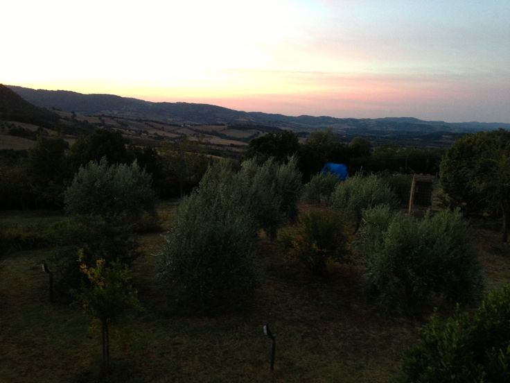 L'alba al Tartuchino
