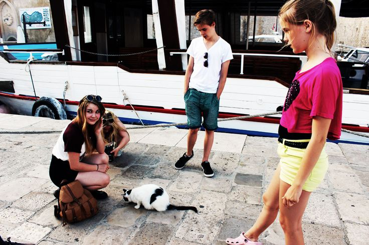 Pet Rescue at Dubrovnik harbour.