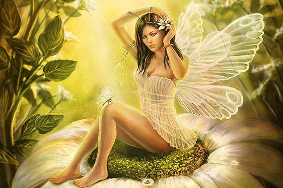 ★ Gentle Green ★ Types Of Fairies  http://in5d.com/ https://www.facebook.com/dyanemusic/posts/10153154267520972