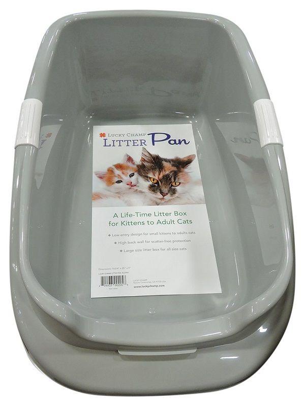 5 Best Litter Boxes For Senior Cats 2020 Guide Oliveknows Litter Box Best Litter Box Litter