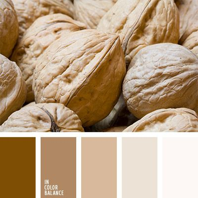cvetovaya-palitra-807 walnut colors, brown, beige and white color palette