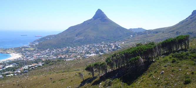 Table Mountain Pipe Trail