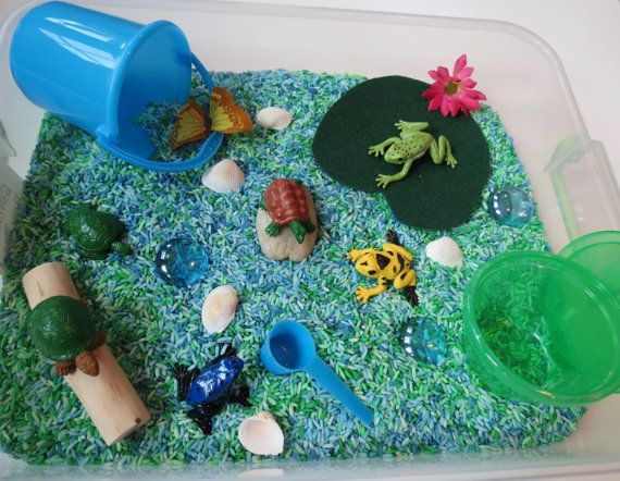 Pond Life Sensory Box