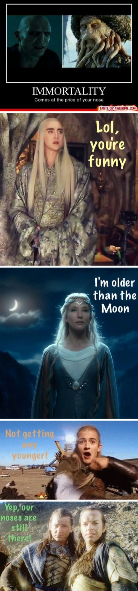 / Lord of the Rings / The Hobbit / Elves / Tolkien / Humor / Galadriel / Thranduil / Legolas / Gil-galad / Elrond