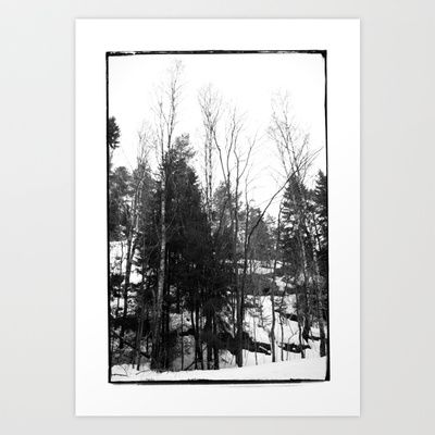Norwegian forest VII Art Print by Plasmodi - $17.00