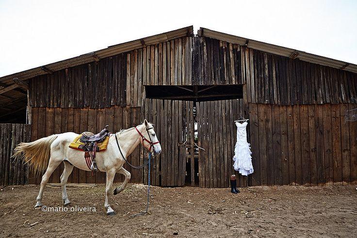 Fotografia de Casamento em Florianópolis Mario Oliveira   Cynthia e Deocelso   trash the dress   Vou casar!