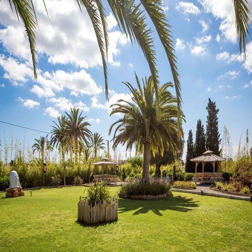 Luxurious Zen Resort: 15 Best Ibiza Zen Hotel Ibiza Images On Pinterest