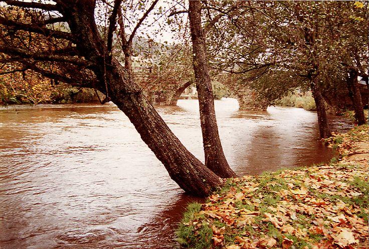 Rio Alva a passar em Sandomil, em pleno Outono