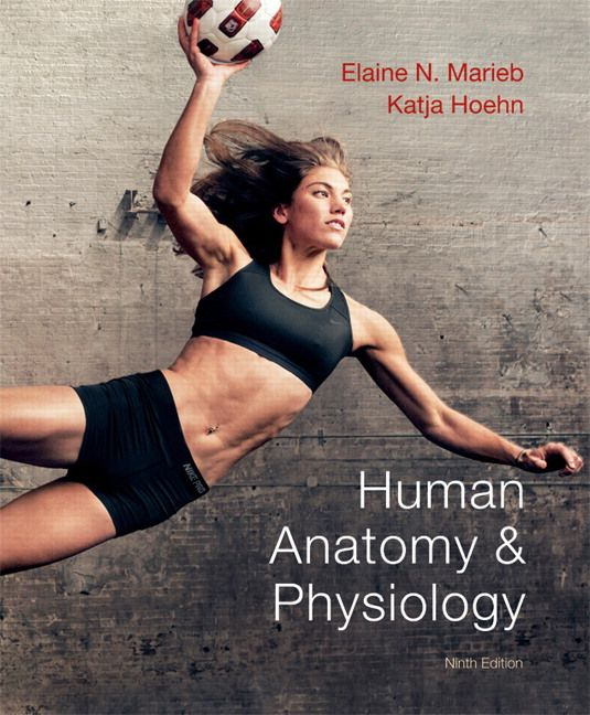 Look who I found on the cover of the new edition of our anatomy and physiology textbook