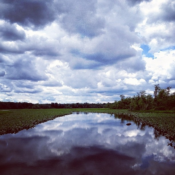 clouds/river/clouds: Clouds And Reflections, Clouds Clouds, Art Clouds River Clouds, Awesome Clouds, Beautiful Clouds, As Clouds, Clouds 3, Awesome Stuff