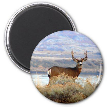 Whitetail Deer by Columbia River Magnet | Hunting - photography gifts diy custom unique special