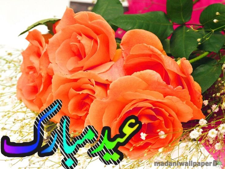 love-eid-greeting-cards-pictures-photos-image-of-eid-card-happy-eid-cards-2013-3