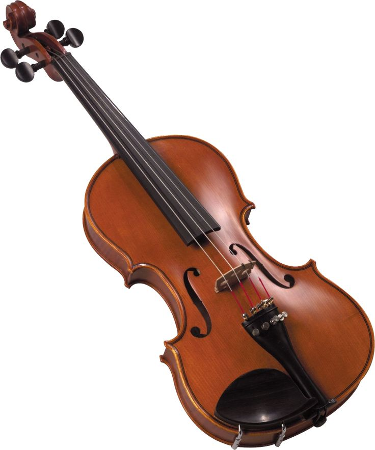 Best 25 Violin Rental Ideas On Pinterest Cool Violins