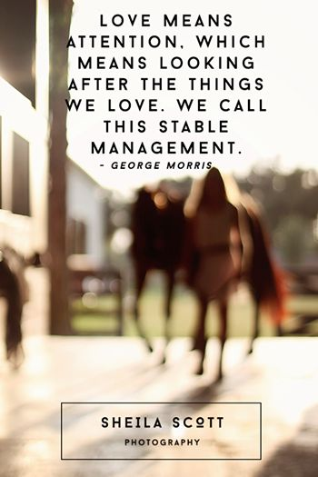 Love = Stable Management. Classic George Morris quote.