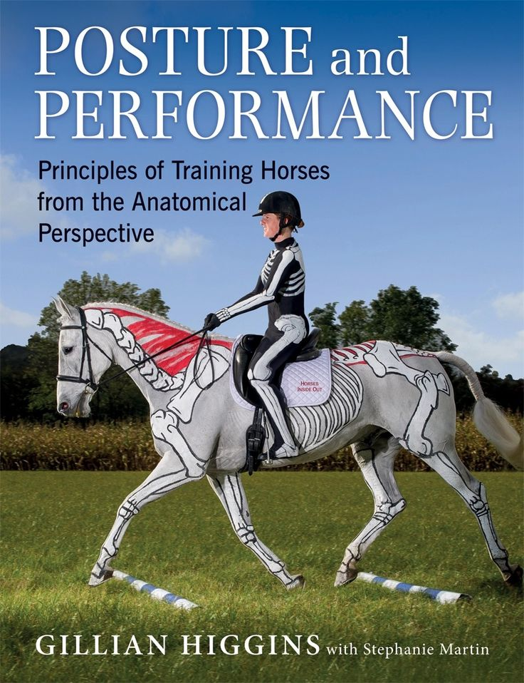 A practical and comprehensive riding and training guide through the understanding of how anatomy can affect performance. See more at  http://www.quillerpublishing.com/new-releases/posture-and-performance.html