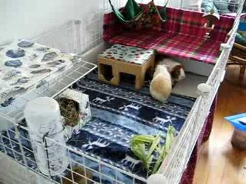 how to use fleece in a cavy cage
