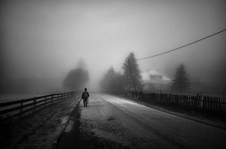 Walk Alone by Guy Cohen