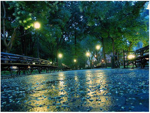 New York City..Photos, Rainy Night, New York Cities, Starry Night, Central Parks, Places, New York City, Rainy Day Activities, Rainy Days
