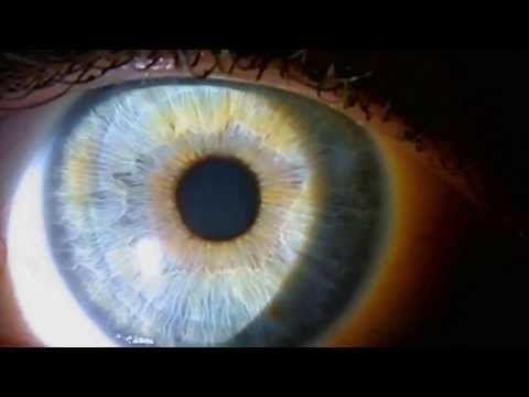 Можно ли восстановить зрение за 1 день. Секретный способ №1! - YouTube