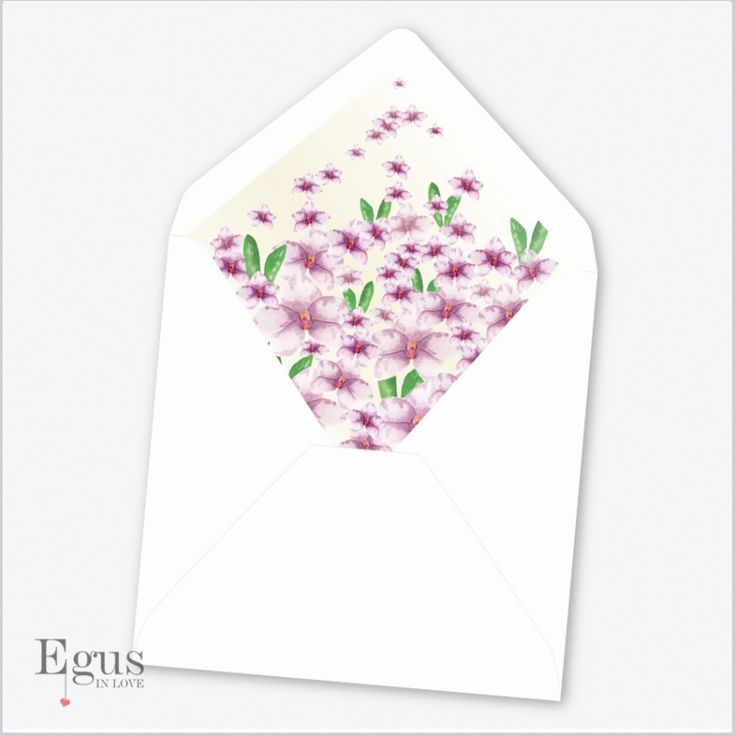 Sobres Forrados Orquídeas Rosadas - Egus In Love